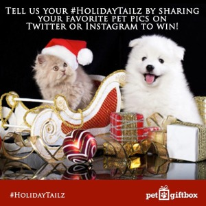 Pet Gift Box Holiday Tailz